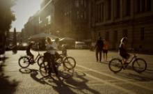 Bild mit Fahrrädern